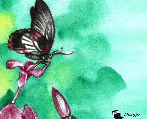 Illustration fait main papillon